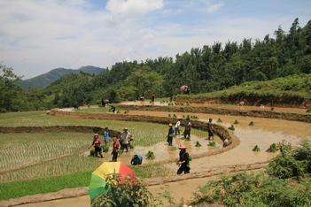 Yen Bai Ha Noi