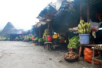 Hanoi - Ban Buoc Village ( Mai Chau )